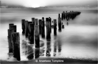 eoy-b-and-w_tompkins_anastasia_slowmo-pilings-nalpes_third-place