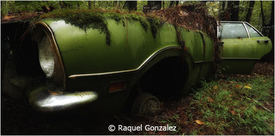 EOY-Color-A_Gonzalez_Raquel_The-Green-Mobile_Third-Place
