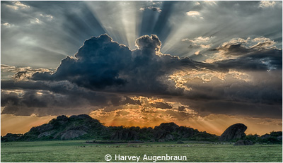 EOY-LandSeaCityscapes_Augenbraun_Harvey_Sunset-at-Olduvi_Imagge-of-the-Month