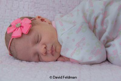 april-group-b_feldman_david_sleeping-beauty_image-of-the-month