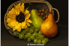 Ramon_Richards_Image-of-the-Month_April-Color-B_Basket-of-fruits