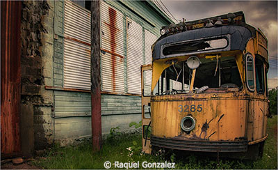 Raquel-Gonzalez_The-Yellow-School-Bus_February-Theme-Industrial-Decay_The-Yellow-School-Bus_Image-of-the-Month