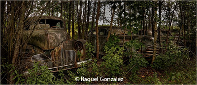 february-2-group-b_gonzalez_raquel_abandoned-in-the-woods