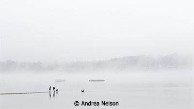 Fog on Oyster Bay