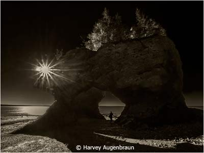 March-Black-and-White_Augenbraun_Harvey_Hopewell-Rocks