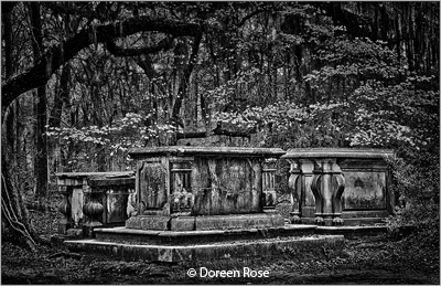 may-black-and-white_rose_doreen_sepulchres_image-of-the-month