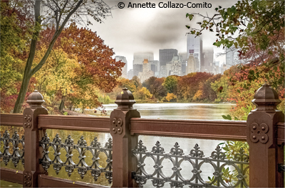 may-theme-central-park_collazocomito_annette_cloudyrainy-but-still-beautiful_none