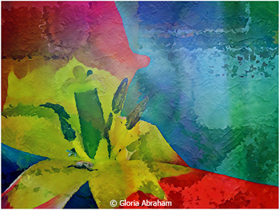 Gloria_Abraham_Textured-color_Honorable-Mention_April-9-Altered-Reality_20190427