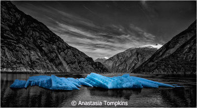 November-Theme--The-Color-Blue_Tompkins_Anastasia_tracy-arm-fjord-alaska