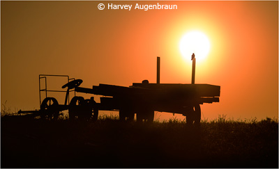october-color-aa_augenbraun_harvey_amish-dawn