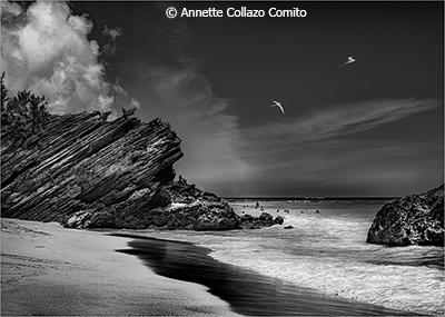 Annette_CollazoComito_Bermudas_Image-of-the-Month_October-Monochrome_20191005