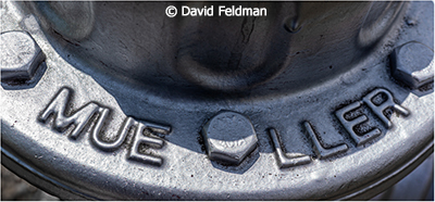 David-Feldman_Silver-Hydrant_September-Color-B_Silver-Hydrant_Honorable-Mention