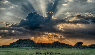 september-color-aa_augenbraun_harvey_olduvi-sunset
