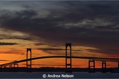 Pell Bridge